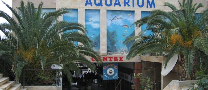 Paphos Aquarium - Cipru