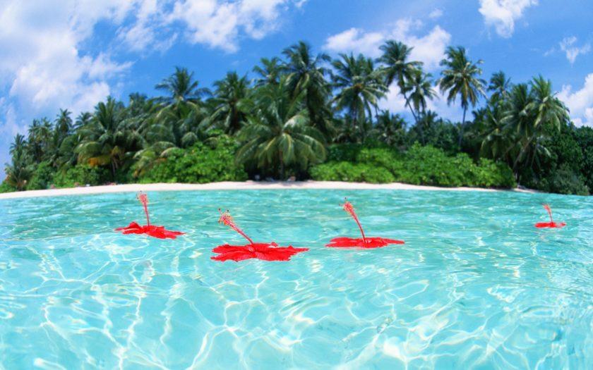 Insulele Maldive - un paradis exotic acum mai aproape de tine