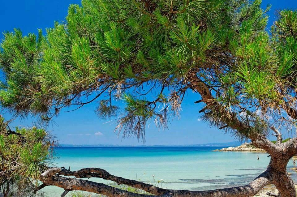 Portokali Beach - Halkidiki