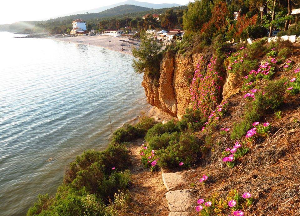 Plaja Pefkari - insula Thassos, Grecia