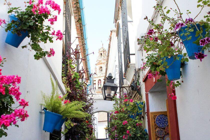 Calleja de Las Flores - Cordoba