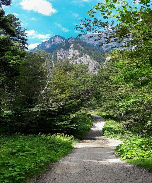 Traseul catre Valea Spumoasa