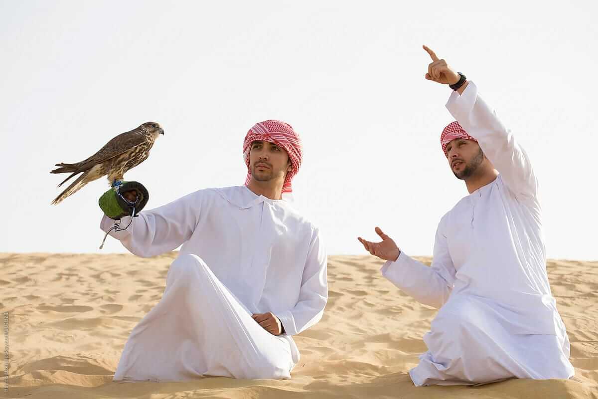 Vanatoare cu soimi in Dubai