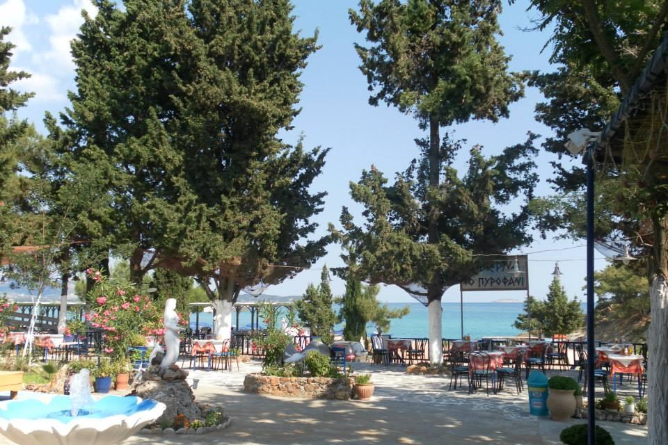 Taverna Pirofani - Limenaria, Thassos